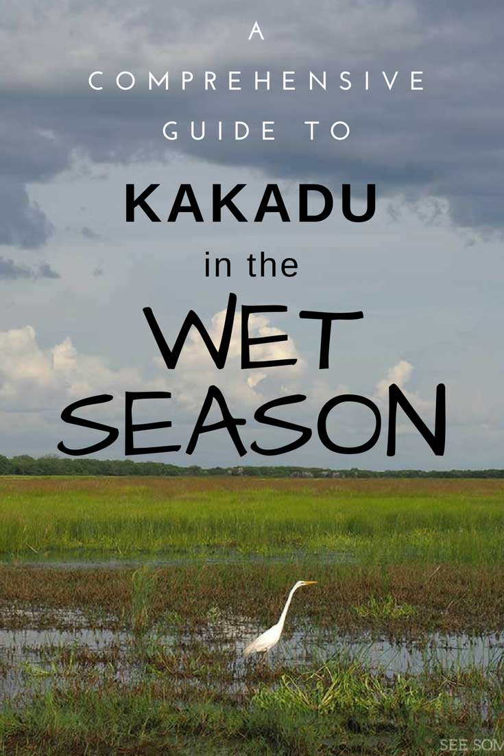 A 7000 word guide to the wild and beautiful wet season in Kakadu National Park.