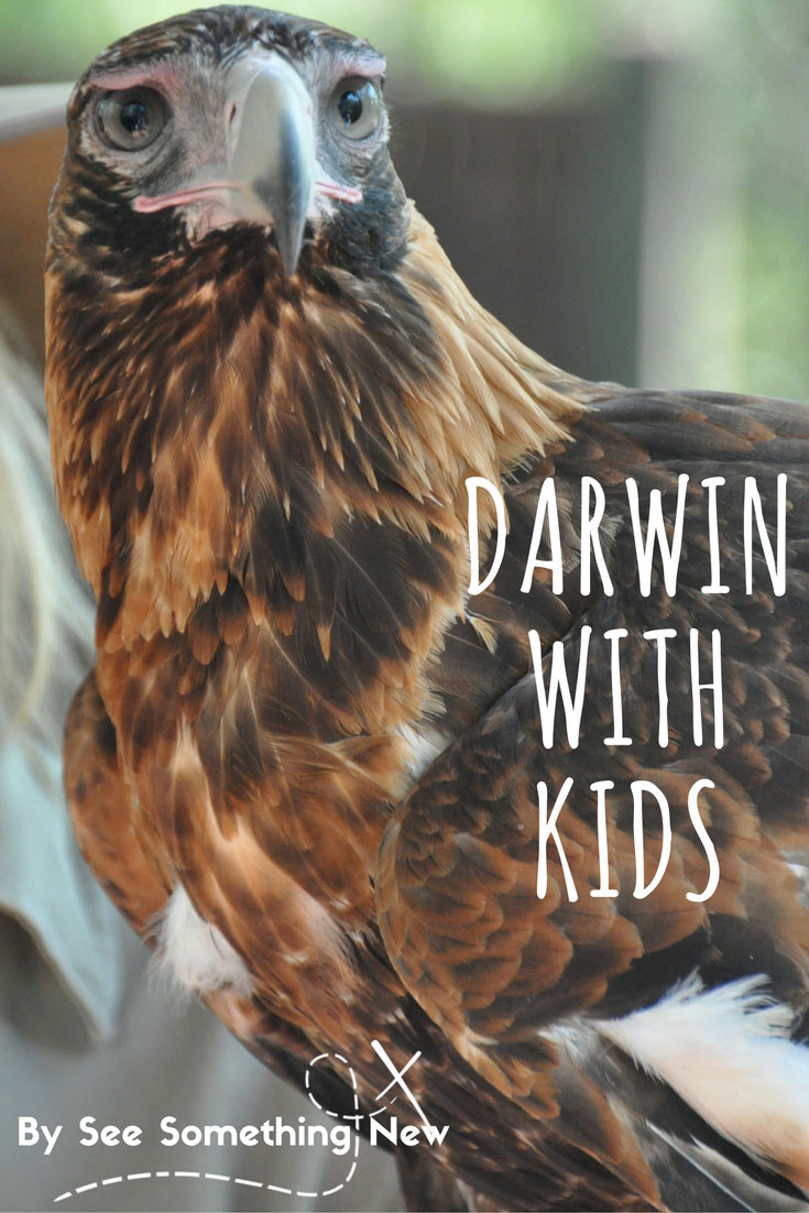 Darwin with kids - Ideas for things to do and places to visit with kids in Darwin | Follow @seesomethingnew for more Australian holiday ideas